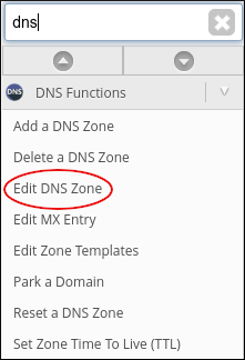 WebHost Manager - Edit DNS Zone